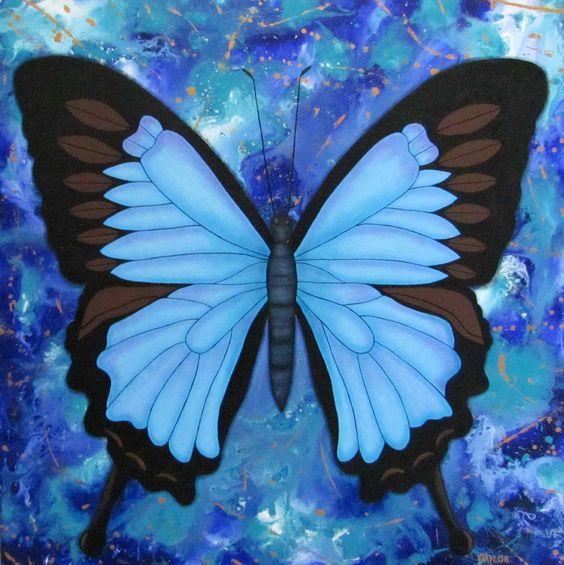 Ulysses Butterfly.