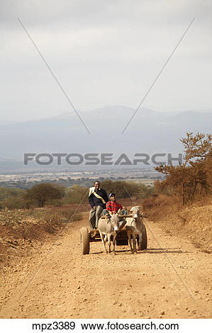Stock Photograph of A donkey powered cart on a dirty road on the.