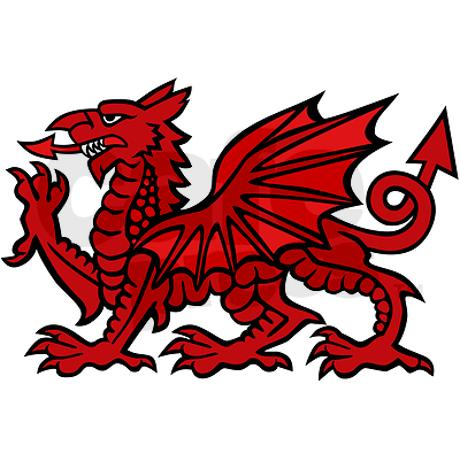 Welcome to the North Wales Archery Society.