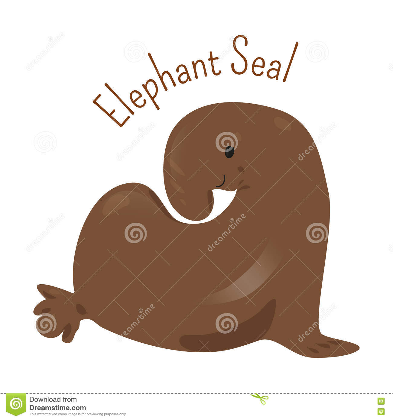 Elephant Seal On White. Stock Vector.