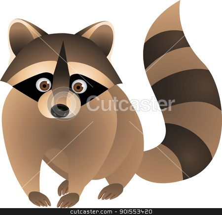 1000+ images about racoons on Pinterest.