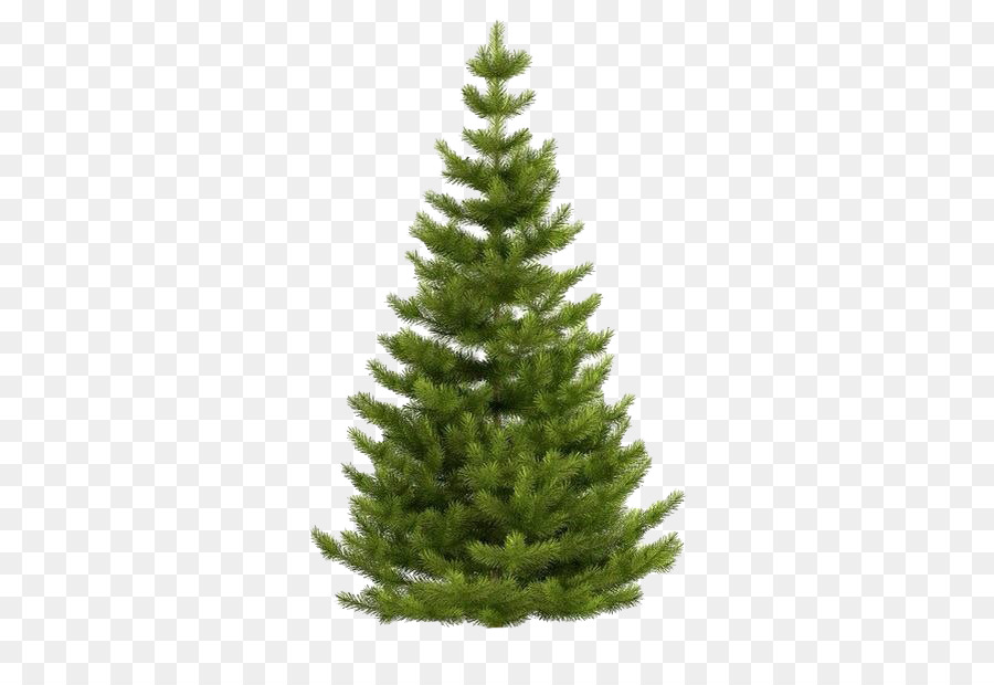 Christmas Tree White png download.