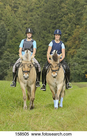 Stock Image of two young women riding on Norwegian Fjord horses.