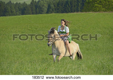 Stock Photo of Norwegian Fjord Horse. Rider wearing a dirndl.