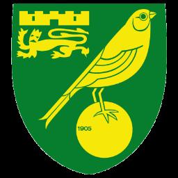 Norwich City Icon.