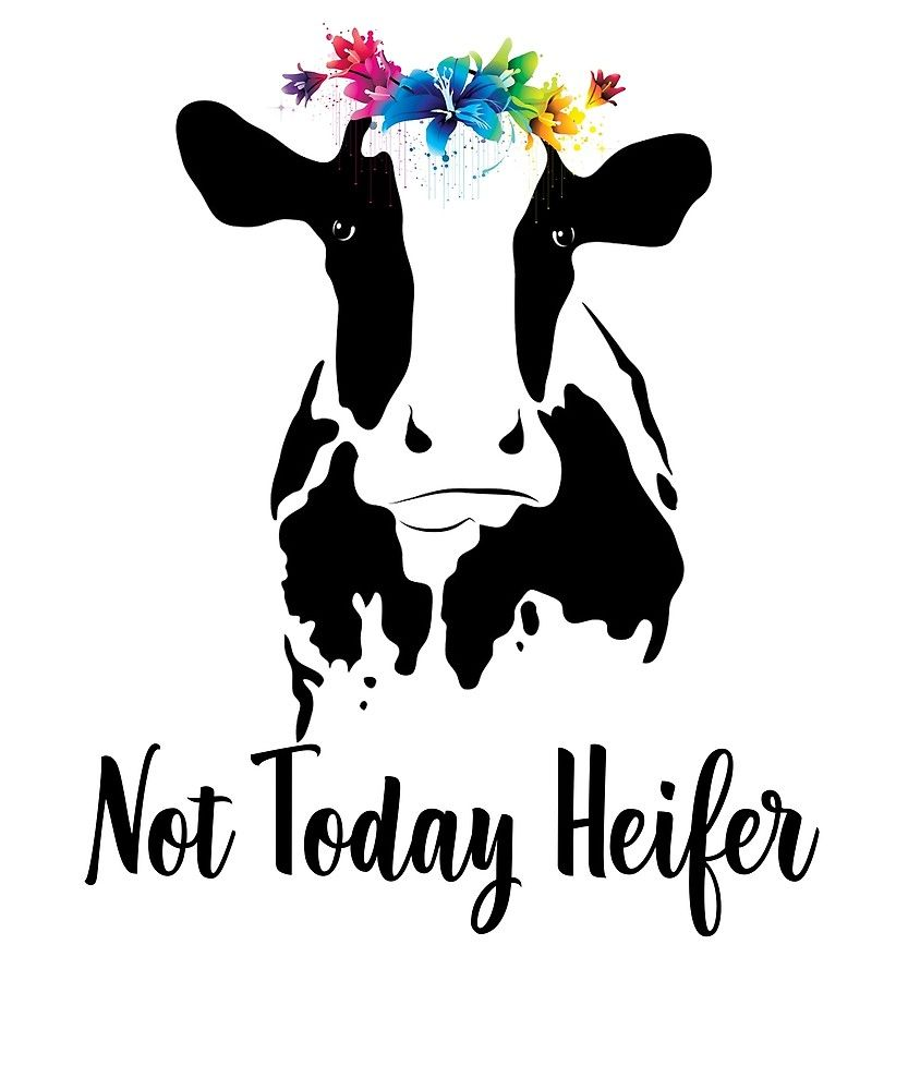not today heifer cow svg images.