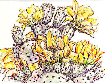 cactus flower art.