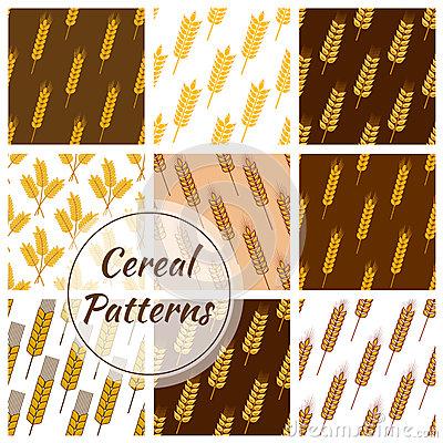 Grain Of Wheat, Barley, Rye And Corn Stock Photo.