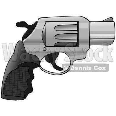 of a 38 Revolver Nub Hand Gun.