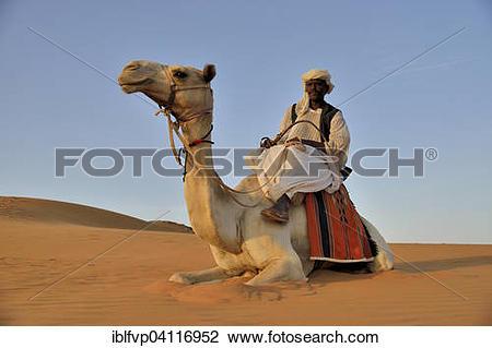 Stock Photo of Man on camel, Meroe, Nubia, River Nile state, Sudan.