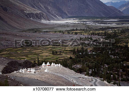 Picture of Nubra Valley x10708077.