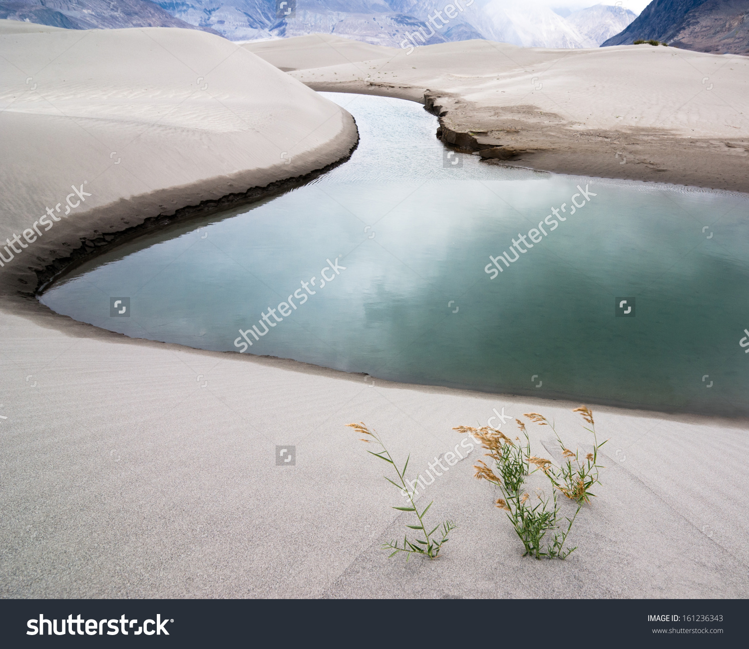 Sand Dunes Nubra Valley River Desert Stock Photo 161236343.