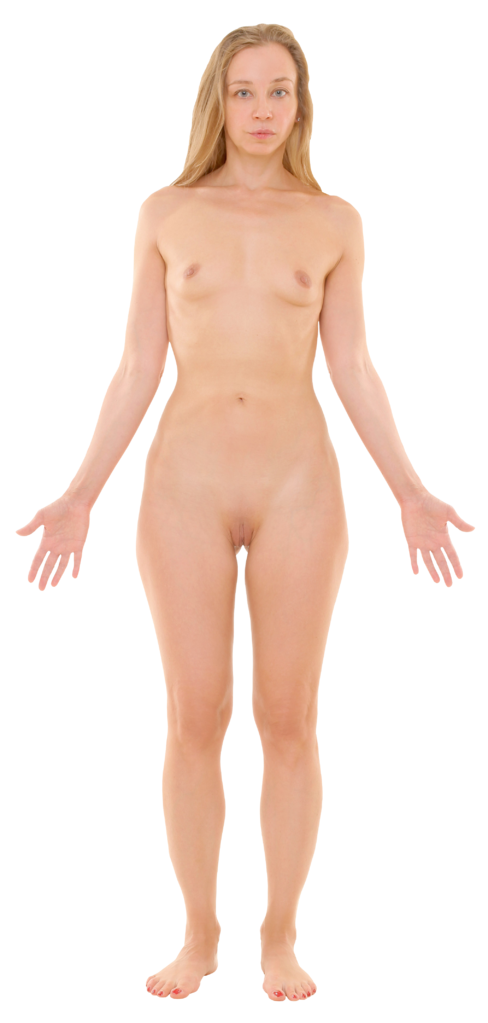 File:Anterior view of human female, retouched.