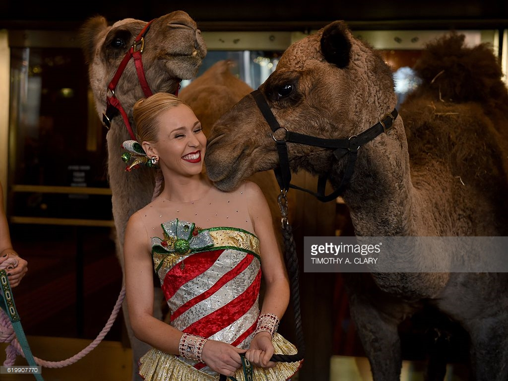 Radio City Rockette Lauren Renck is nudged by a camel right before.