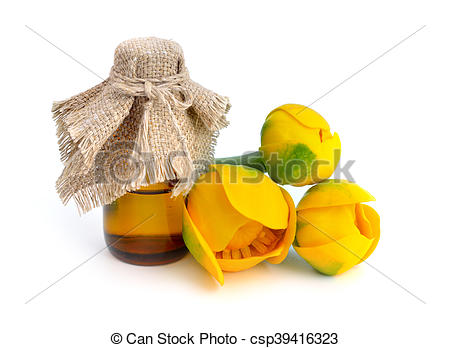 Stock Photo of Nuphar lutea, Yellow Water.