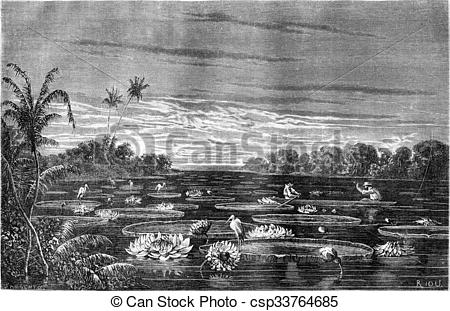 Stock Illustration of Nuria lake view, vintage engraving..