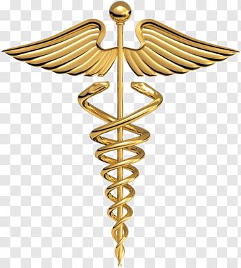 Blue snake with wand logo, Registered nurse Nursing Nurse.