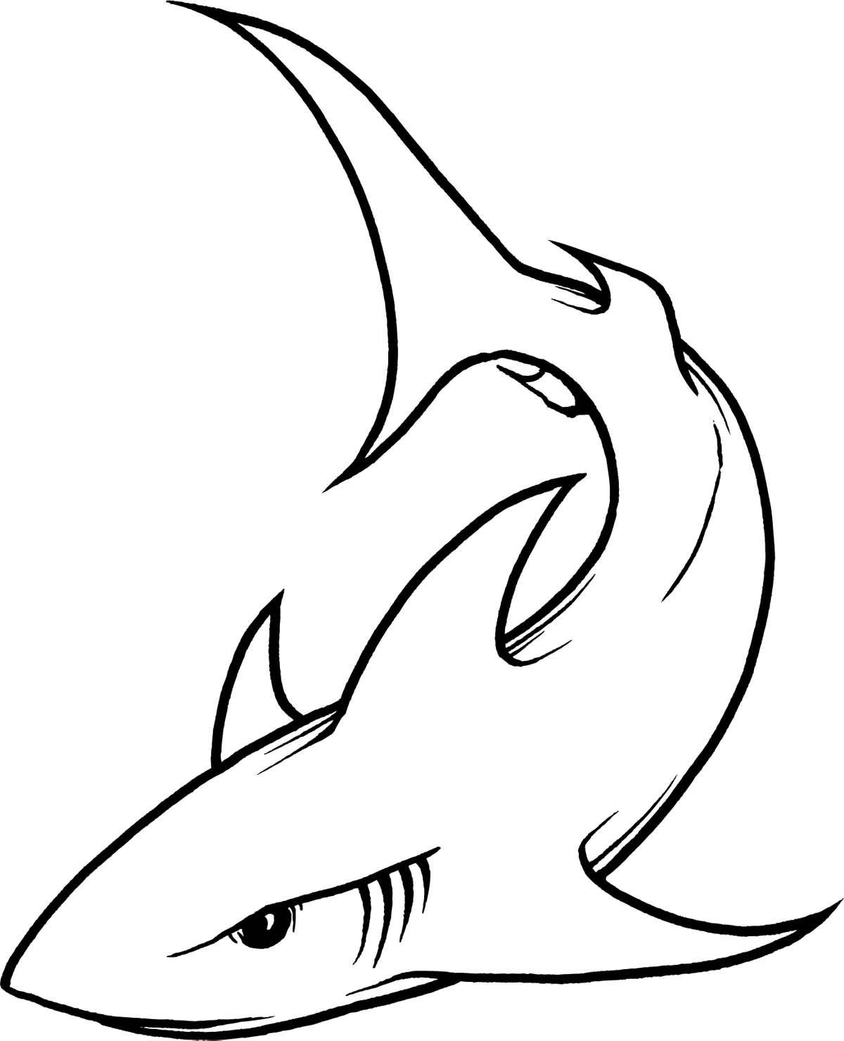 6126 Shark free clipart.