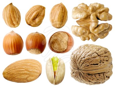 Nut Clip Art Page 1.