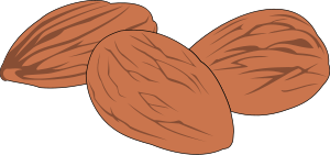 Nut Clipart, vector clip art online, royalty free design.