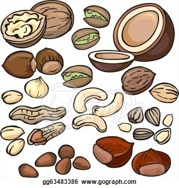 Food Nuts Clipart.