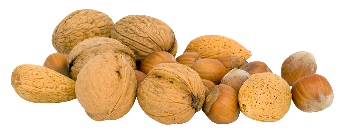 Nuts PNG Transparent Image.