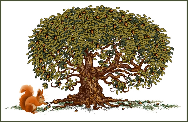 Nut tree clipart - Clipground