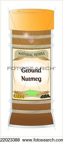 Clip Art of Ground Nutmeg k22023388.