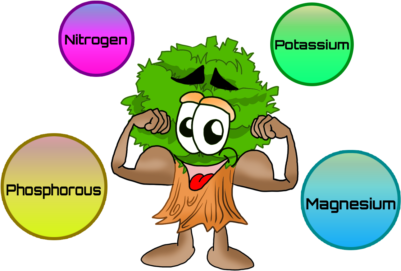 Nutrients for Plants Clip Art.