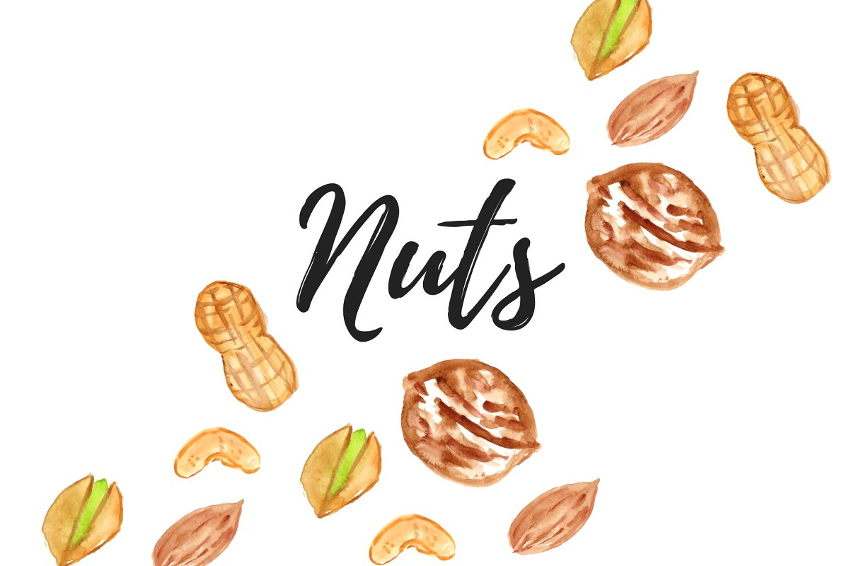 Watercolor Nut Clipart.