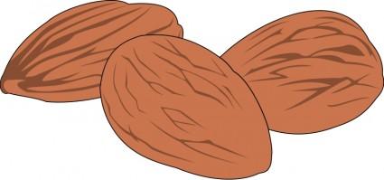 Nut Clip Art Free.