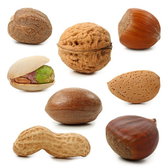 Nuts Magazine Clipart.