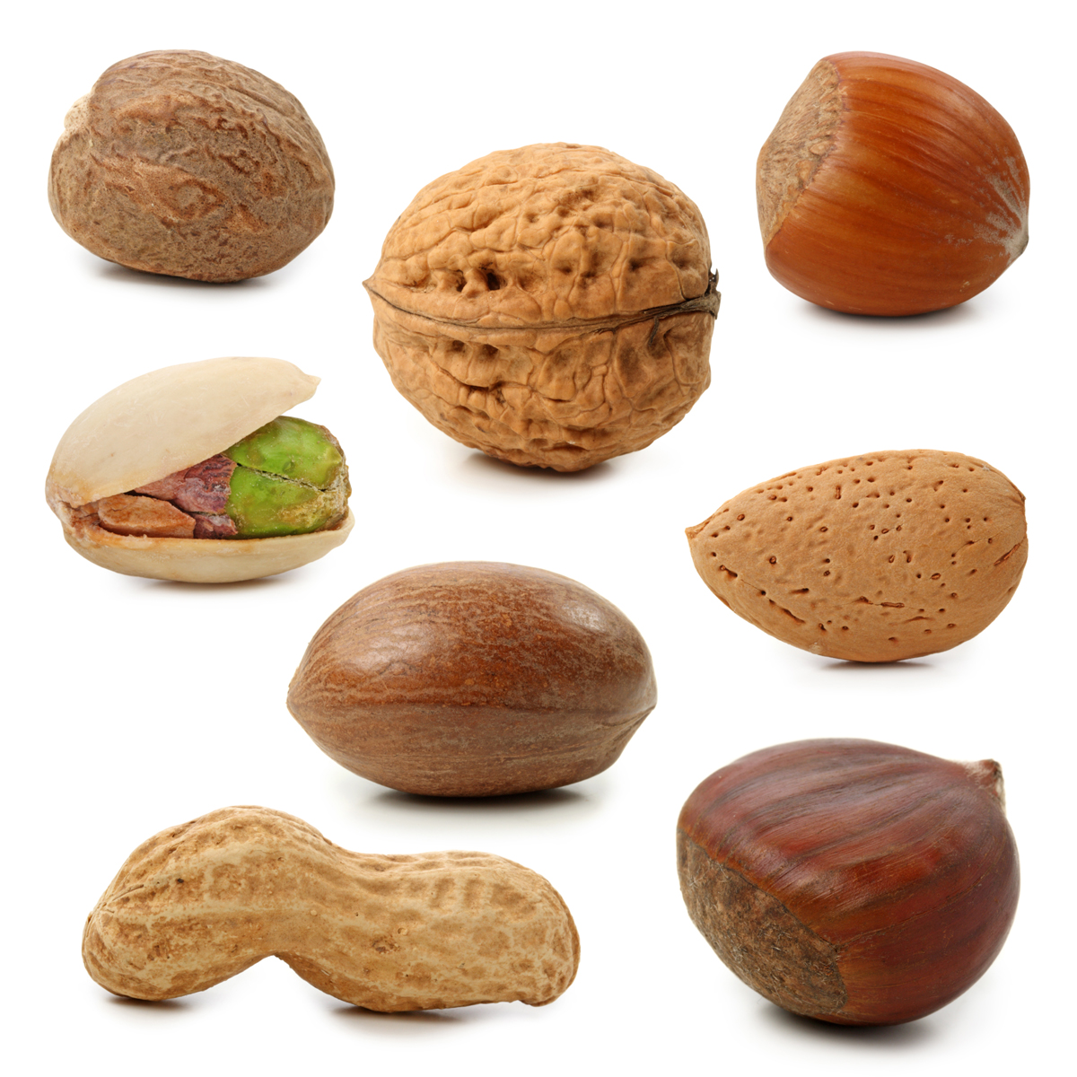 478 Nuts free clipart.