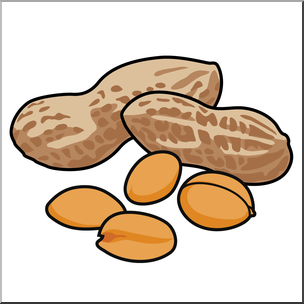 Nut clipart art, Nut art Transparent FREE for download on.