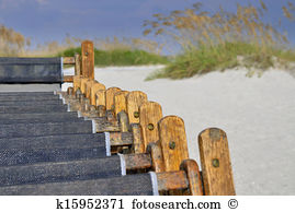 Beachgrass Images and Stock Photos. 212 beachgrass photography and.