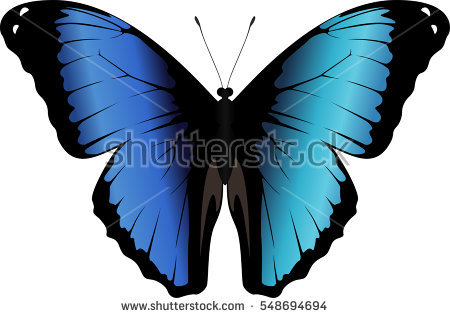 Nymphalidae clipart #17