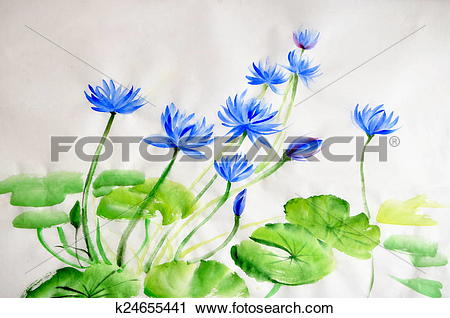 Stock Photography of Nymphea flower watercolor painting k24655441.
