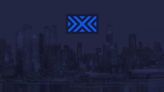 Overwatch League New York Excelsior NYXL: composition.