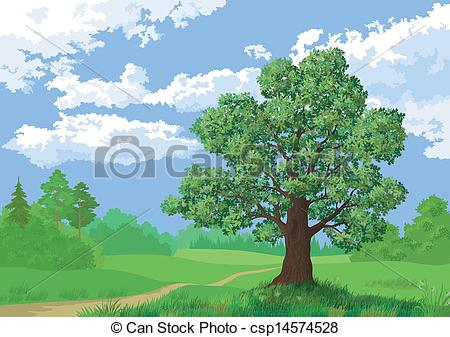 Vector Illustration of Landscape, summer forest and oak tree.