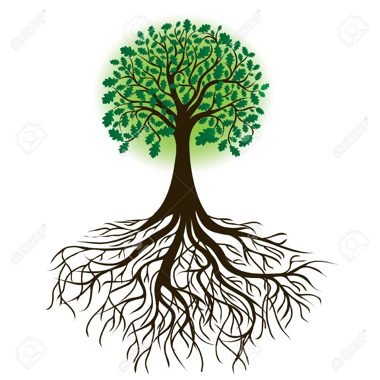 17,256 Oak Forest Stock Vector Illustration And Royalty Free Oak.