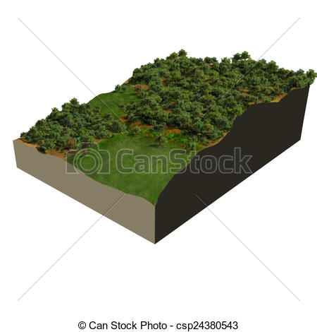 Drawing of 3d model oak forest, digital illustration csp24380543.