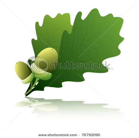 Leaf with Acorns and Drop Shadow.