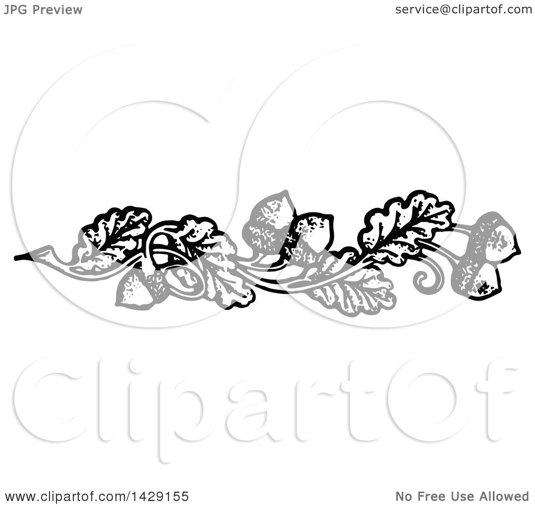 Clipart of a Vintage Black and White Acorn and Oak Leaf.