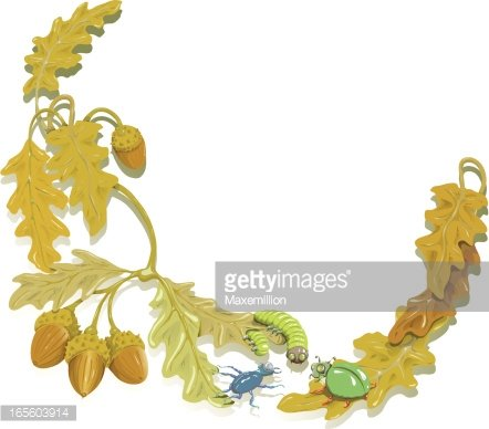Oak Leaf and Bug Border. Clipart Image.