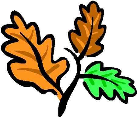 Oak Leaf Clipart.