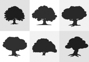 Oak leaf silhouette free vector graphic art free download.