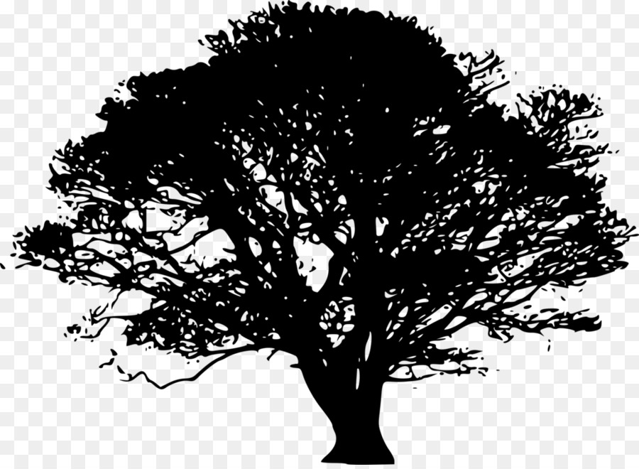 Oak Tree Silhouette png download.