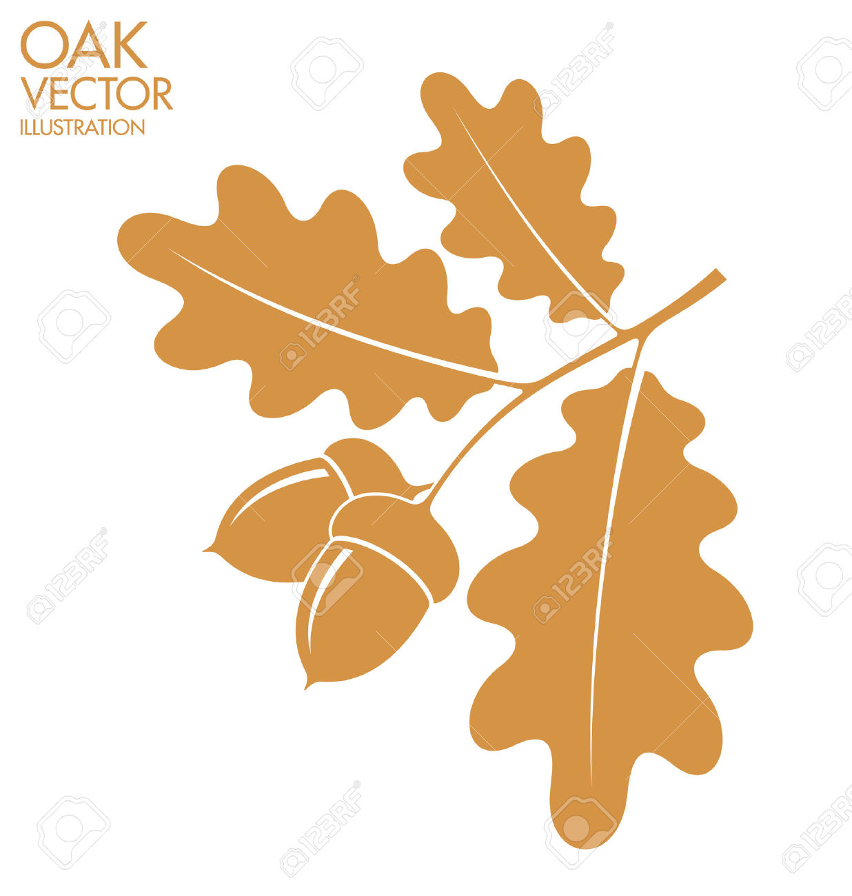 Oak leaves and acorns clipart 6 » Clipart Station.
