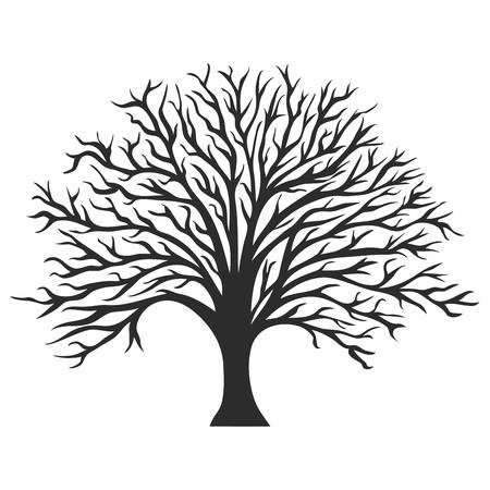 13,409 Oak Tree Silhouette Cliparts, Stock Vector And.