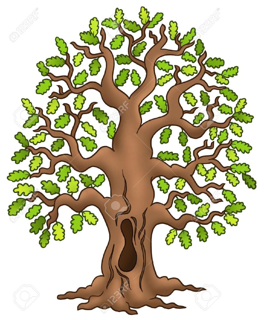 Oak Tree Forest Clipart Backgrounds.